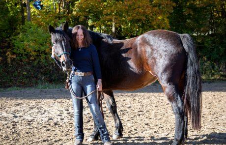 CKS Agilitech – das Horse Agility-Trainingssystem