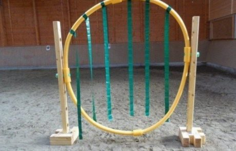 CKS Agilitech – das Horse Agility-Trainingssystem - Aufbauvarianten