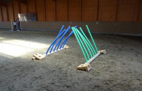 Horse Agility Trainingssystem
